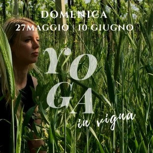 Yoga in Vigna… le domeniche in vigna!